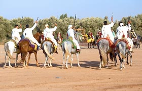 Fantasia Horse back equestrian performance in Meknes