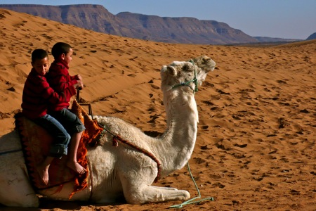 Camel-Trek-Zagora-Dunes-Of-Tinfo