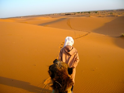 Camel-Trekking-Merzouga-Sahara-Desert