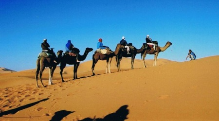Camel-Trekking-in- Merzouga