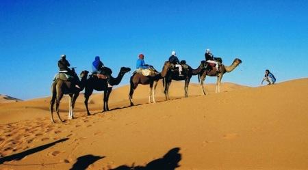 Camel-Trekking-in- Merzouga