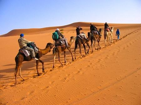 Camel-Trekking-in-Sahara-Desert