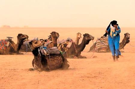 Wind-Storm-in-M'hamid-Sahara-Desert