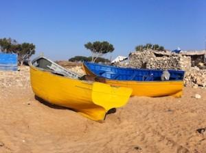 Cap-Sim, Essaouira (Photograph by Lynn Sheppard)