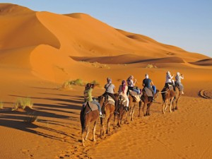 Family Tour Travel Exploration Camel Trekking