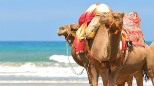 Morocco Weather, Best Time to Visit
