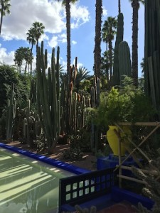 Majorelle Gardens, Top 5 Things Marrakech