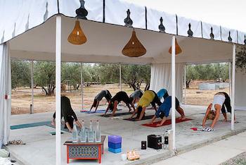 Peacock Pavilion, Yoga Tent, Marrakech