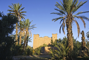 Skoura Palmeraie, Valley of 1000 Kasbahs